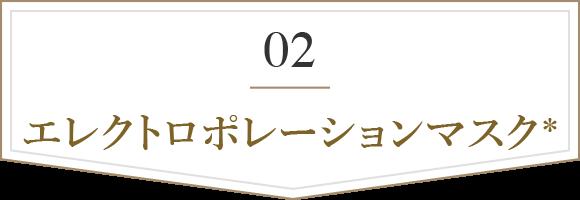 02 エレクトロポレーションマスク※