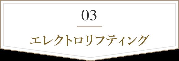 03 エレクトロリフティング