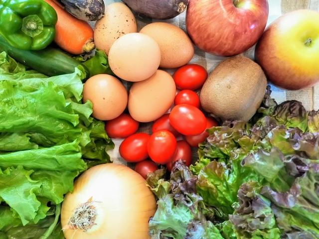 免疫力を維持するために食生活を見直そう!免疫力アップ食材